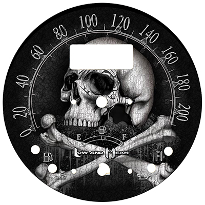 Raider 1900 Speedometer Faces